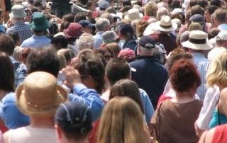 opioid demographics