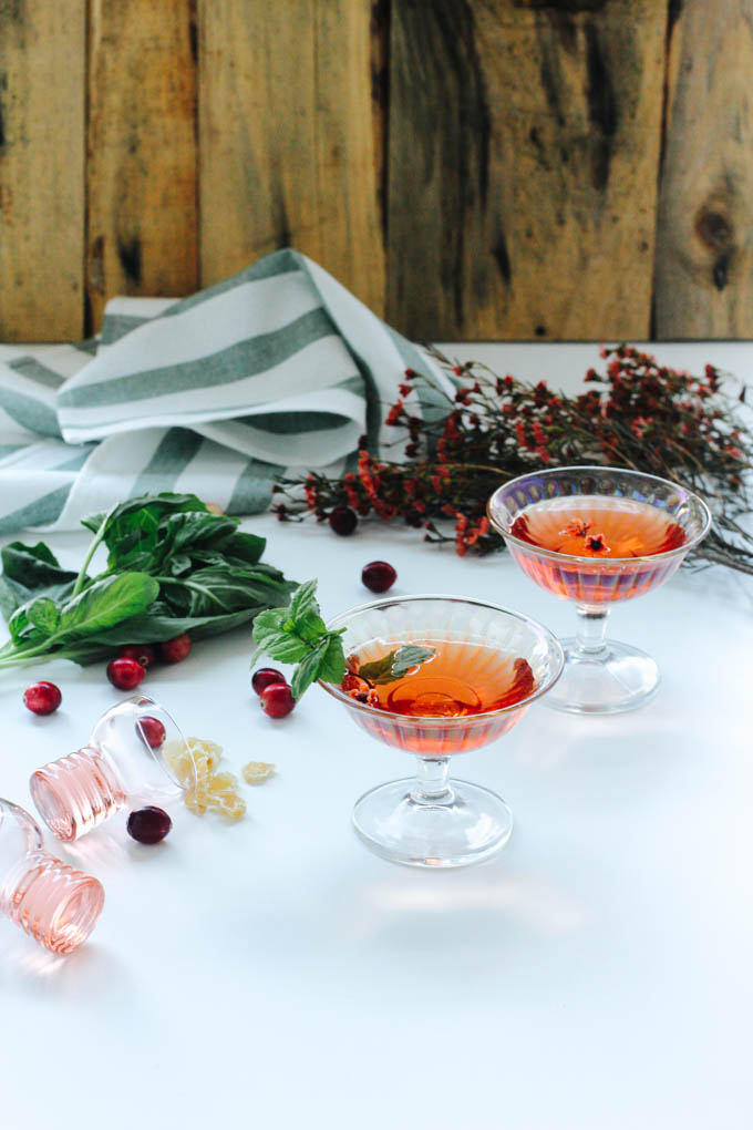 Recipe: Cranberry Ginger Mint Cocktail | PainDoctor.com