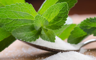 Is Stevia Safe For Pain Patients? | PainDoctor.com
