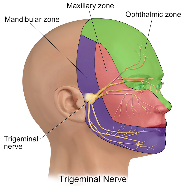 16 Trigeminal Neuralgia Treatments: What Can Help Me? | PainDoctor.com